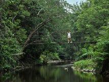 Activité asiatique de fille de botaniste de biologiste avec le mode de vie dans la forêt tropicale images stock