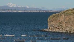 Activité de pêche dans le Lac Titicaca, Pérou banque de vidéos