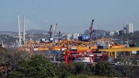 Activité de port de commerce de mer de Vladivostok banque de vidéos