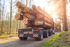 Activité de sylviculture : transport des troncs d'arbre photographie stock