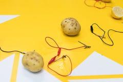Activité de TIGE de batterie de pomme de terre avec des pommes de terre, citrons, Cl d'alligator images stock