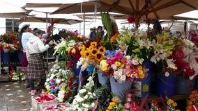 Activité de ventes au marché de fleur de Cuenca Equateur clips vidéos