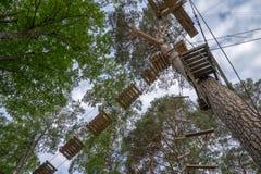Activité en plein air aventureuse à un cours s'élevant élevé de défi de forêt aérienne Images stock