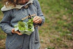 Activité en plein air d'été pour des enfants - chasse au trésor, feuilles assortissant dans la boîte à oeufs Photographie stock libre de droits