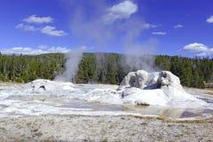 Activité géothermique au parc national de Yellowstone, Wyoming photos stock