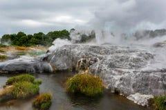 Activité géothermique spectaculaire dans Rotorua Nouvelle-Zélande image libre de droits