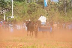 Activité récréationnelle traditionnelle de sport à Jaffna photographie stock