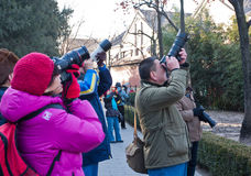 Activités de groupe de fervents de photographie de Pékin image libre de droits