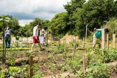 Activités de jardinage dans un camp de réfugié allemand Images stock
