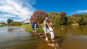 Activités extérieures de famille en parc et lacs Photos libres de droits