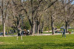 Activiteit in het park stock foto