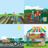 Activities farm family. The process of planting Royalty Free Stock Photography