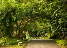 Activities In Public Park Stock Images