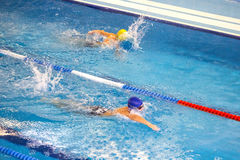 Activities on the pool children swimming fitness, competition Royalty Free Stock Image
