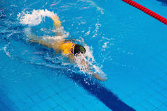 Activities on the pool children swimming fitness, competition Royalty Free Stock Images