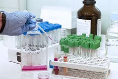 Daily activities in a research laboratory Royalty Free Stock Photography