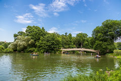 Activity in Central park in summer, NYC. Royalty Free Stock Photo