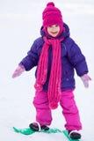 Activity winter Royalty Free Stock Image