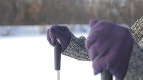 Activo una mujer mayor contratada a caminar nórdico con los palillos en el concepto sano de la forma de vida del bosque del invie metrajes