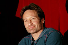 Actor David Duchovny Stock Photo