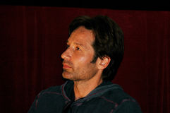 Actor David Duchovny Royalty Free Stock Images