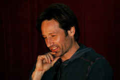 Actor David Duchovny. Participates in a Q&A for Californication as part of the L.A. Times Screening series the Mann Chinese 6 Theater in Los Angeles Stock Image