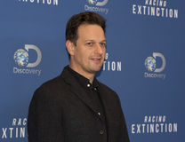 Actor Josh Charles Royalty Free Stock Photos
