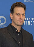 Actor Josh Charles Stock Photos