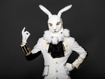Actor posing in white rabbit suit on black Royalty Free Stock Photo