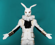 Actor posing in white rabbit suit on color blue Royalty Free Stock Photography