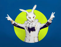 Actor posing in white rabbit suit on color green Stock Photos