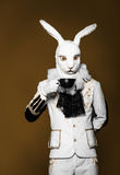 Actor posing in white rabbit suit with cup on dark Stock Image