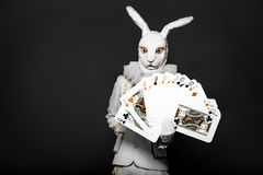 Actor posing in white rabbit suit with playing Royalty Free Stock Photos