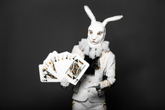 Actor posing in white rabbit suit with playing. Cards on black background Stock Images