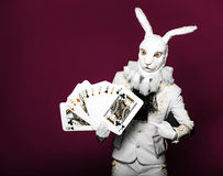 Actor posing in white rabbit suit with playing Stock Image