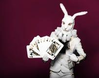 Actor que presenta en el traje blanco del conejo con jugar Imagen de archivo
