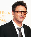 Actor Tim Daly Royalty Free Stock Image