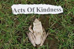 Actos de la amabilidad Imagen de archivo libre de regalías