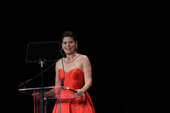 Actress Debra Messing Speaking at Black Tie Dinner Stock Images
