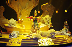 Actress,lion and tiger. Actress,white tiger and golden lion were in Guangzhou chimelong circus,China Royalty Free Stock Photos