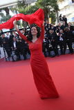 Actress Sonia Braga. CANNES, FRANCE - MAY 21: Actress Sonia Braga attends the 'Elle' Premiere during the 69th annual Cannes Film Festival at the Palais des stock photos