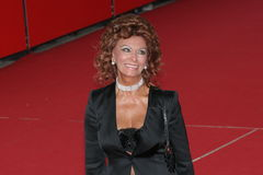 Actress Sophia Loren Royalty Free Stock Photo