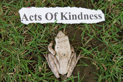 Acts of kindness Royalty Free Stock Image