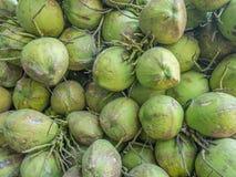 Actuele kokosnoten Royalty-vrije Stock Fotografie