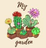 Actus de ¡ de Ð dans un pot de fleurs Illustration de Vecteur