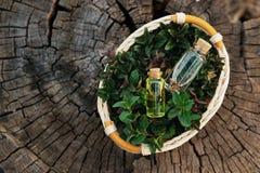 Acuñe el aceite y la esencia fragante en pequeñas botellas con la hierbabuena l Fotos de archivo libres de regalías