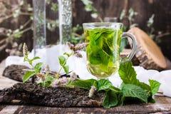 Acuñe el té en un vidrio, hierba en una tabla de madera Foto de archivo