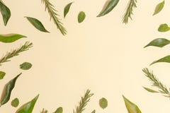 Acuñe las hojas, el mandarín y el romero en un fondo amarillo Visión superior imagen de archivo libre de regalías