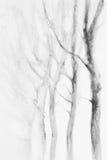 Acuarela blanca del invierno de los árboles stock de ilustración