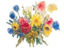 Acuarela colorida de las dalias aislada stock de ilustración